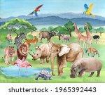 Wild Animals Of Africa On The...