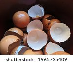 Pile Of White And Red Eggshells ...
