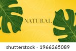 monstera leaf on bright yellow...   Shutterstock .eps vector #1966265089