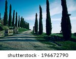 typical tuscan countryside road ... | Shutterstock . vector #196672790