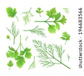 vector twigs of parsley and dill | Shutterstock .eps vector #196683566