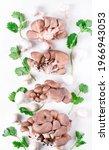 Oyster Mushrooms  Champignons...
