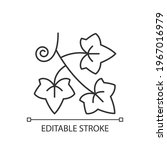 english ivy linear icon. hedera ... | Shutterstock .eps vector #1967016979