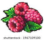 Raspberry. Abstract ...