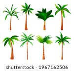 palm tree or coconut palm... | Shutterstock .eps vector #1967162506