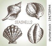 seashells hand drawn set....   Shutterstock .eps vector #196728944