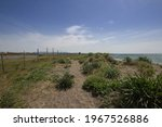 """Small photo of Landscape of Nucleo Carabinieri Biodiversity of the """"Saline di Tarquinia"""" Nature Reserve.It is an open and closed door to diversify the sea water into the salt pans.Viterbo,Italy."""