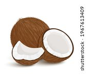 coconut. set of exotic whole ... | Shutterstock .eps vector #1967613409