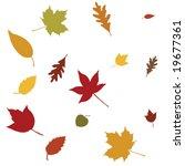 autumn leafs   Shutterstock .eps vector #19677361