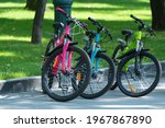 Three Bicycles On Park...