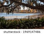 Scenic View of Lake Overstreet,  a lake in The Alfred B. Maclay State Gardens is a 1,176-acre Florida State Park, botanical garden and historic site In Tallahassee.