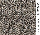 snake skin pattern texture... | Shutterstock .eps vector #1969275433
