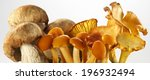 Mix Fresh Mushrooms Forest On...