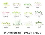 set of seeds and sprouts of...   Shutterstock .eps vector #1969447879