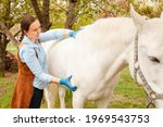 Small photo of A young beautiful female vet inspects a white horse. Love, medicine, pet care, trust, happiness, health. back, withers. Illness severity pain malaise close up