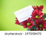 beautiful red blooming... | Shutterstock . vector #197058470