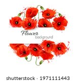 flower greeting card with red... | Shutterstock .eps vector #1971111443