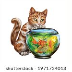 Ginger Cat Watching Goldfish In ...