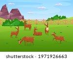Deer Grazing In Meadow Flat...