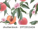 peaches  fruit flowers and...   Shutterstock .eps vector #1972311626
