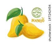 mango fruit   Shutterstock .eps vector #197242454