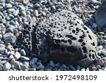 Water Washed Rock Holes At The...