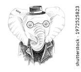 hand drawn portrait of elephant ... | Shutterstock .eps vector #1972525823
