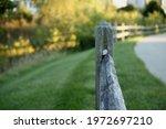 Wooden Fence Rail Running...