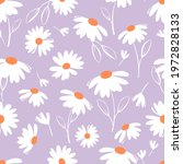 seamless pattern with daisy...   Shutterstock .eps vector #1972828133
