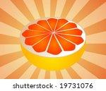 sliced half pink grapefruit...   Shutterstock .eps vector #19731076