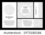 Set Of Vector Graphic Frames...