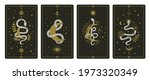 magical snakes tarot cards....   Shutterstock .eps vector #1973320349