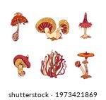 beautiful fantasy mushrooms set.... | Shutterstock .eps vector #1973421869