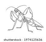 Mantis Before Attack ...
