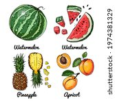 vector food icons of fruits.... | Shutterstock .eps vector #1974381329