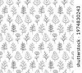 Leaf And Flower Vector Sketch...
