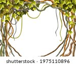 ivy frame. liana branches and... | Shutterstock .eps vector #1975110896
