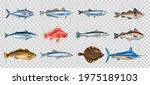 sea fish realistic transparent... | Shutterstock .eps vector #1975189103