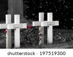 Red Roses And Cross On Cemeter...