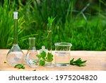 Biology Glassware ...