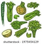 celery icons set  sketch of...   Shutterstock .eps vector #1975454129