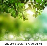 spring or summer season... | Shutterstock . vector #197590676