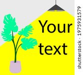 promotion color icon. yor text...