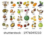 vector food icons of fruits.... | Shutterstock .eps vector #1976045210