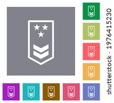 military insignia with two... | Shutterstock .eps vector #1976415230