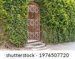 Castle Gate Arch With Ivy. The...