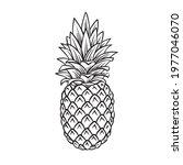 pineapple tropical fruit... | Shutterstock .eps vector #1977046070