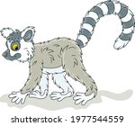 exotic tropical madagascar ring ... | Shutterstock .eps vector #1977544559