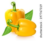vector illustration of yellow... | Shutterstock .eps vector #197767319