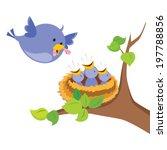 mother bird love. mother bird... | Shutterstock .eps vector #197788856